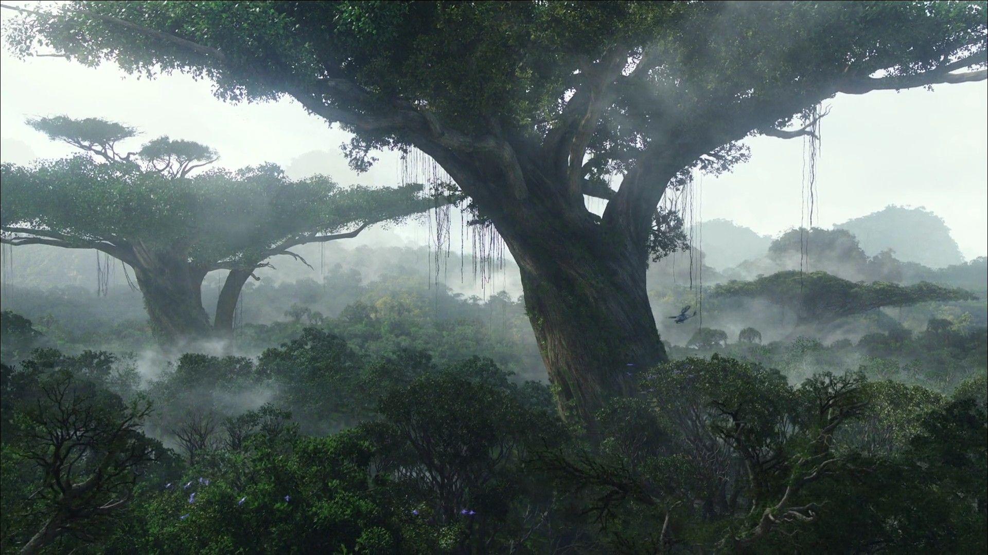 Avatar; Pandora Avatar tree, Jungle wallpaper, Nature