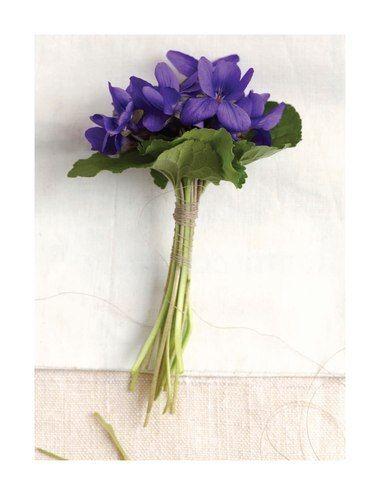 Sweet Violets!! Lembra Mari quando a Vó Maria fazia os marinhos de violetas para colocar no seu vestido?