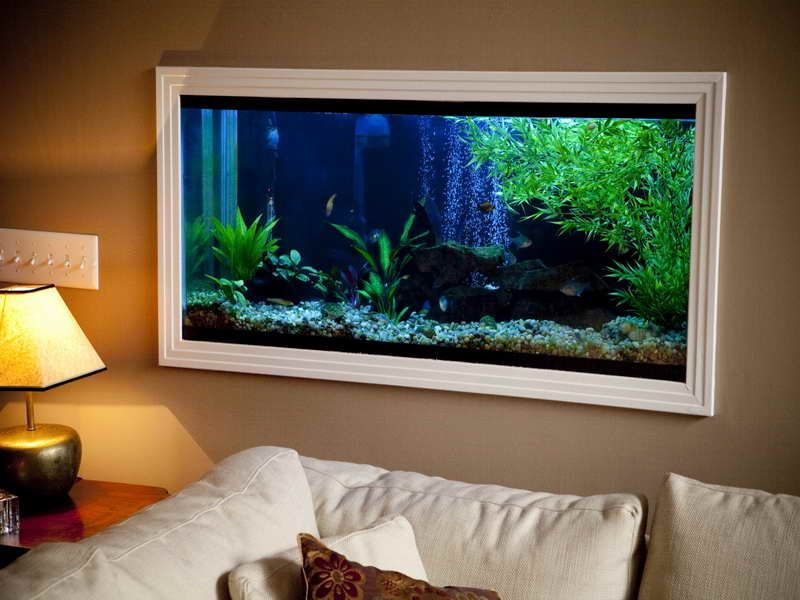 To have a fish tank built into the wall i would love this for Fish tank house