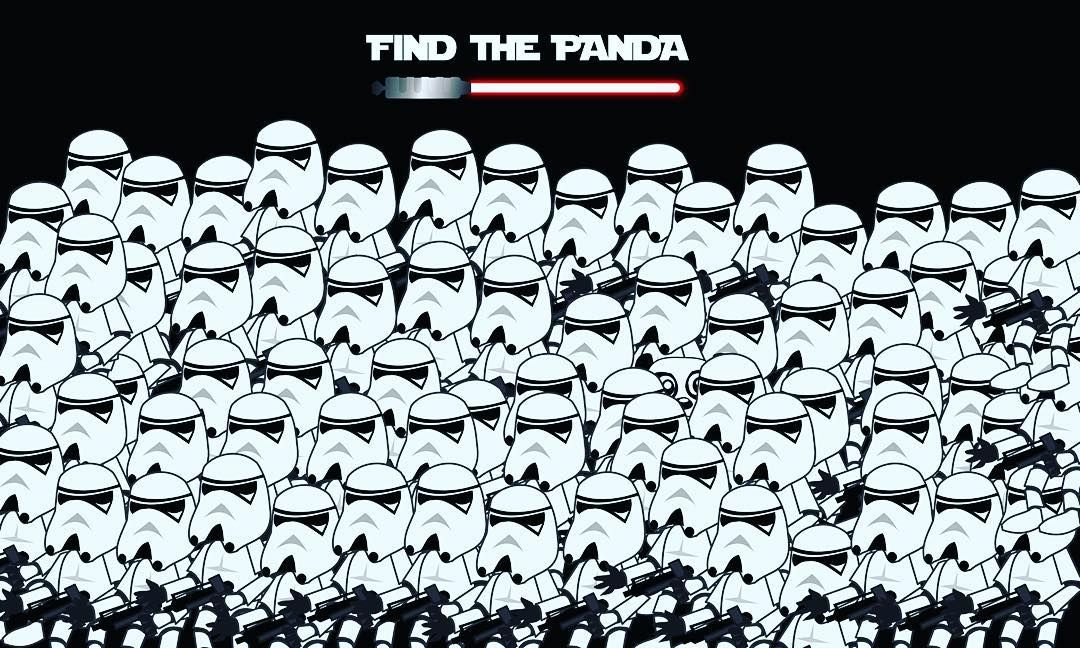 find the panda hidden pinterest panda and worksheets