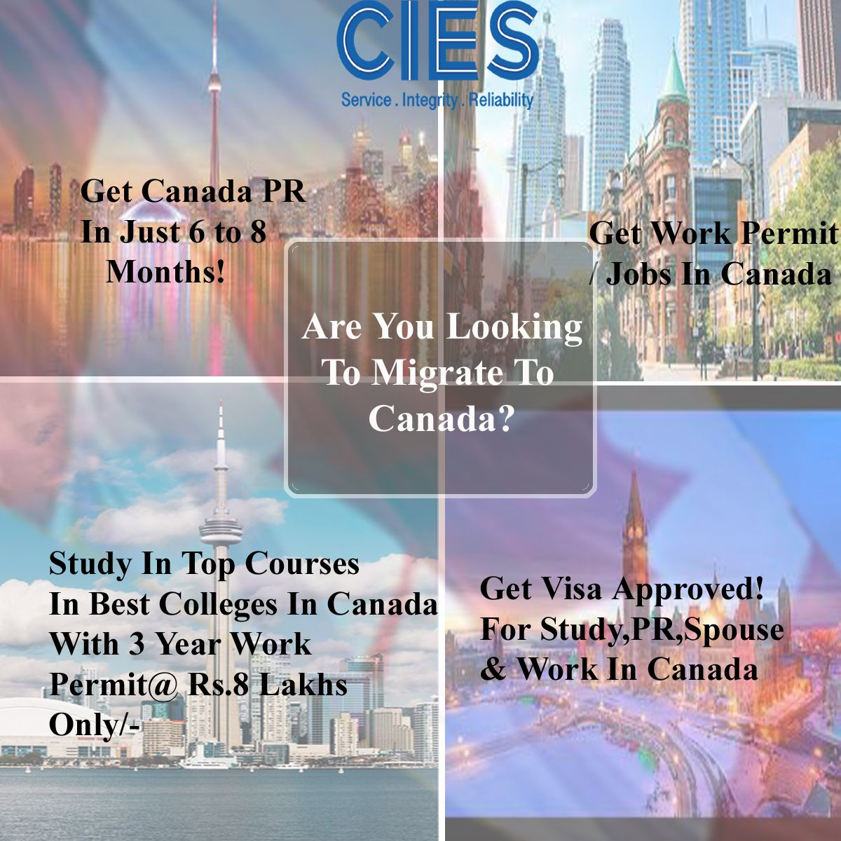 Live up your dream with CIES for Study, Work & Stay In