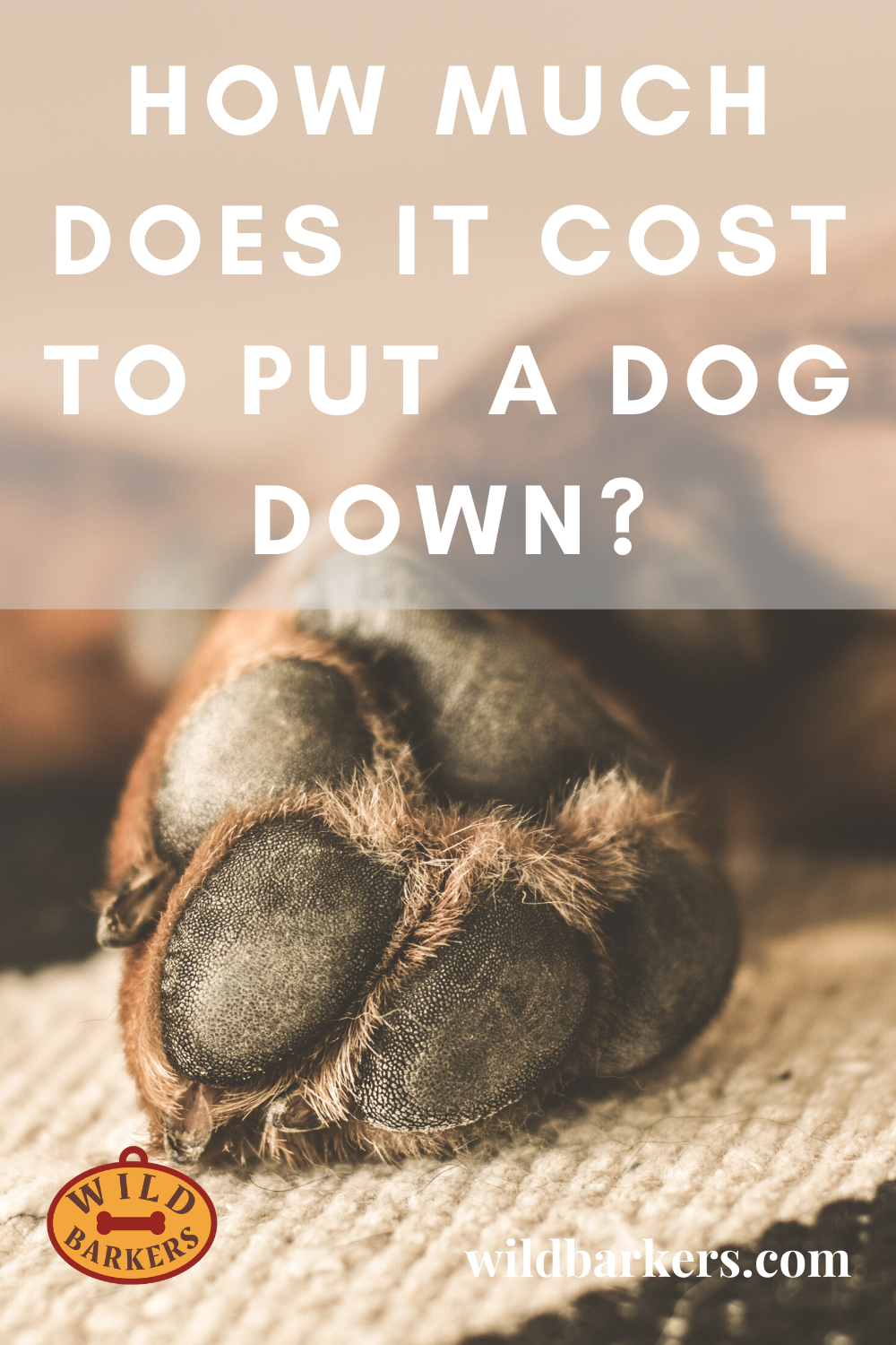 How Much Does It Cost To Put A Dog Down In 2020 Putting Dog To Sleep Dogs Cost