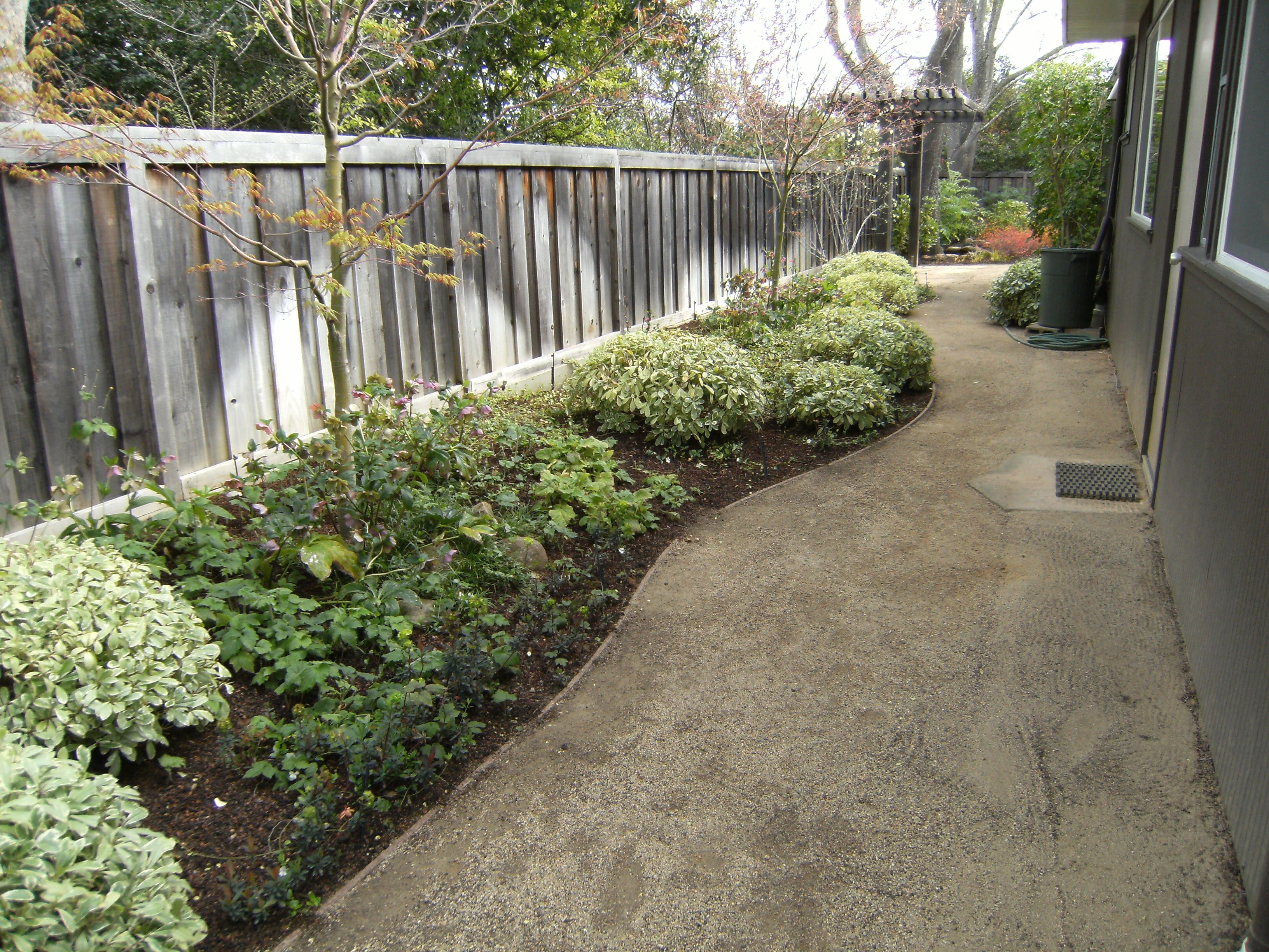 Decomposed Granite Paths (With images)   Decomposed ... on Decomposed Granite Backyard Ideas id=25942