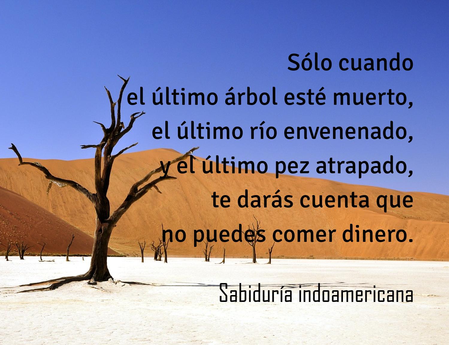 Frase Tierra Arboles Peces Ríos Dinero Sabiduria Frases De