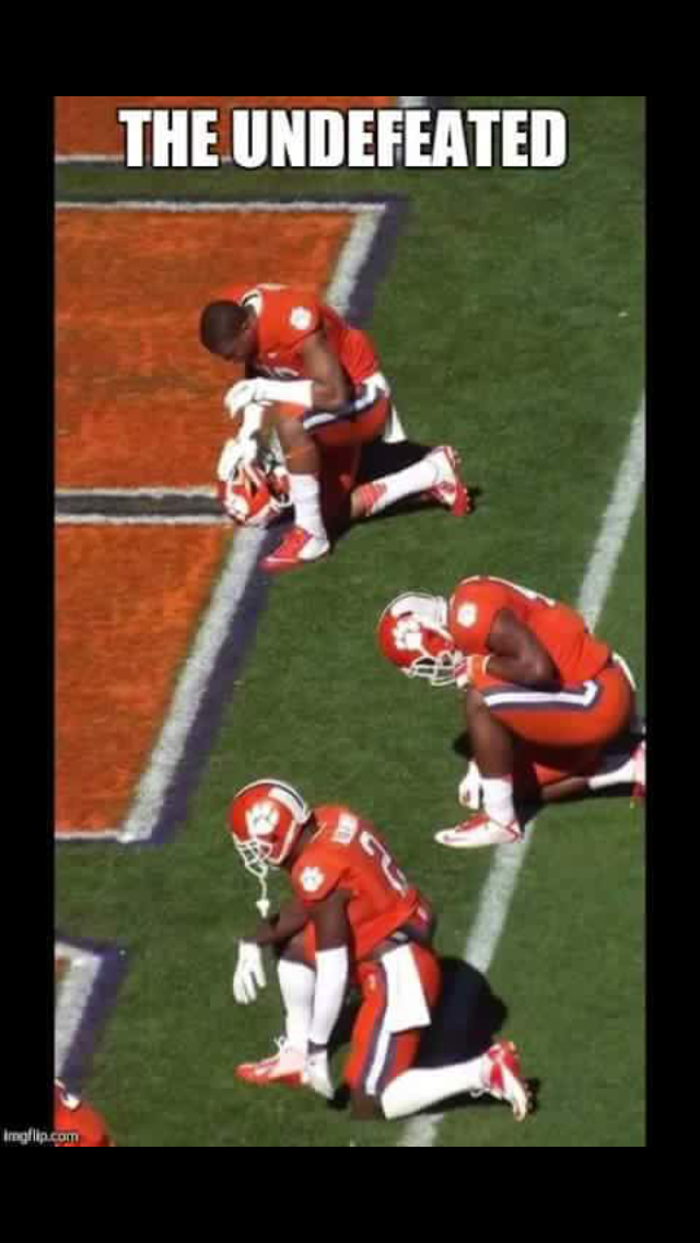 Pin by Mary Waldt on It's At One O'Clock Clemson tigers