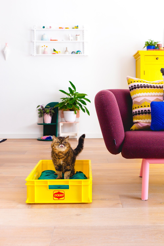 Geel vintage krat in de woonkamer Oh Marie! | Pastel room ...