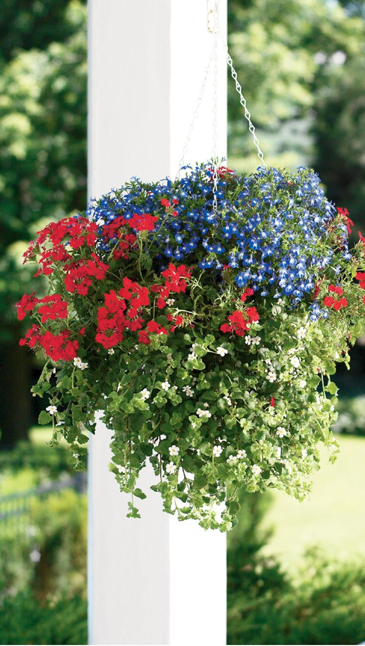 Hang A Basket Of Red White And Blue To Enjoy On Your Full Sun