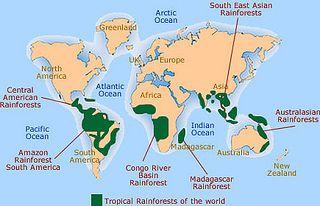 World Tropical Rainforest Tour Destinations Rainforest Map