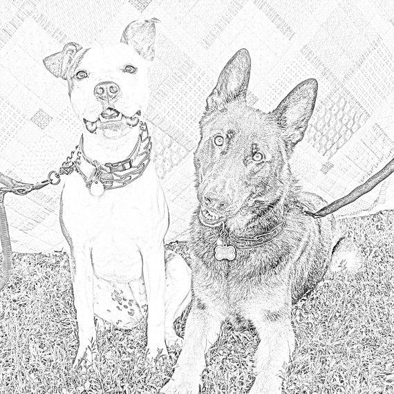 Printable Adult Coloring Page German Shepherd and Friend ...