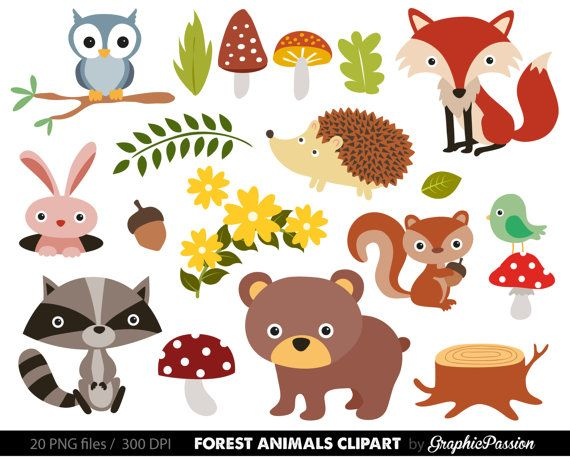 forest animals baby digital clipart woodland animals clip art rh pinterest com jungle animals clipart black and white jungle animals clipart