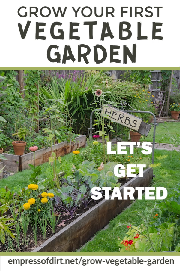 Photo of How to Grow Vegetables for Beginners