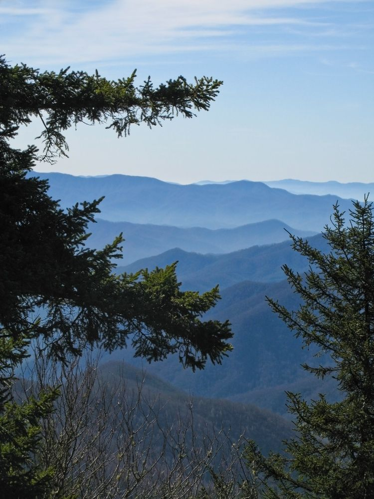 The Great Smoky Mountains Are Home Sweet Home.