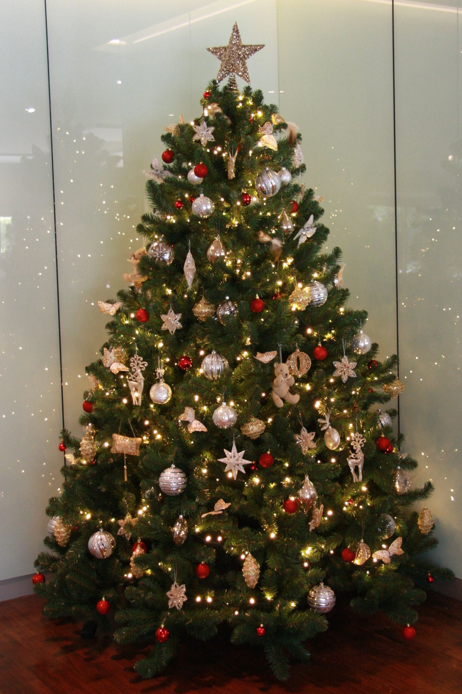 Decorated Christmas Tree Photo Gallery | Decorated Christmas Tree ...