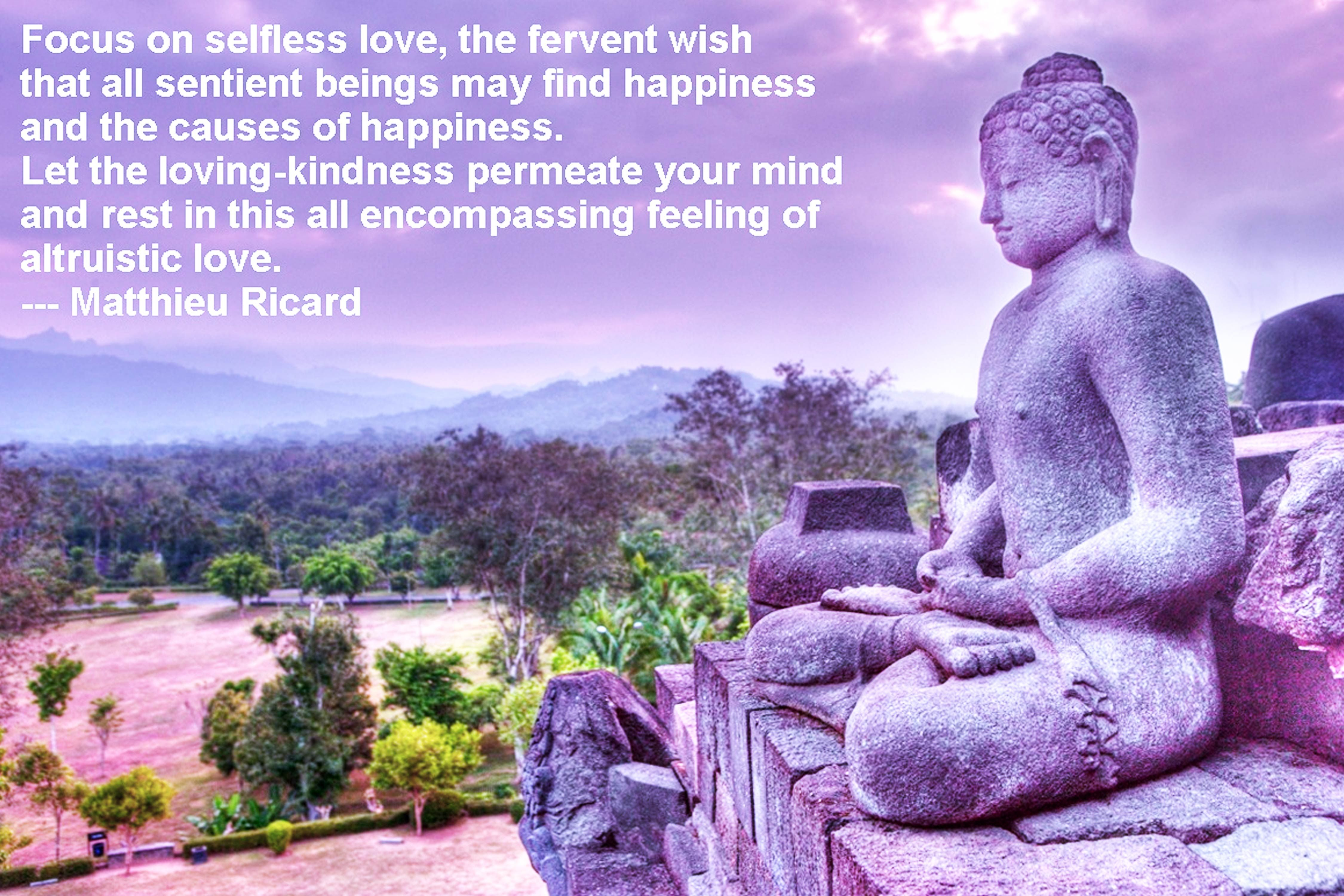 Loving Kindness Quotes Meditationcourselovingkindnessquote  Game Of Life  Pinterest