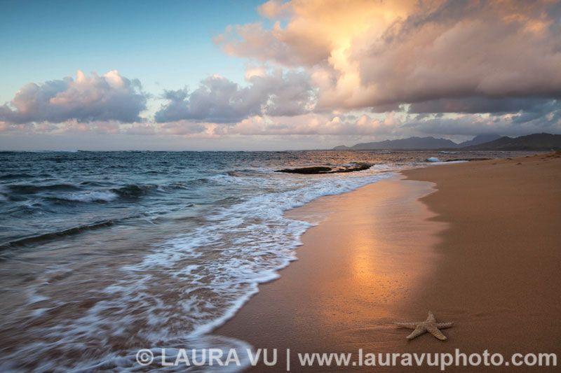 Paradise - Kauai, Hawaii