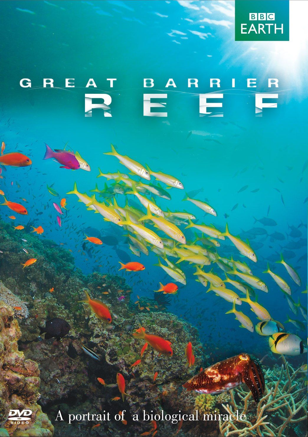 Reliance Home Videos Great Barrier Reef Great barrier