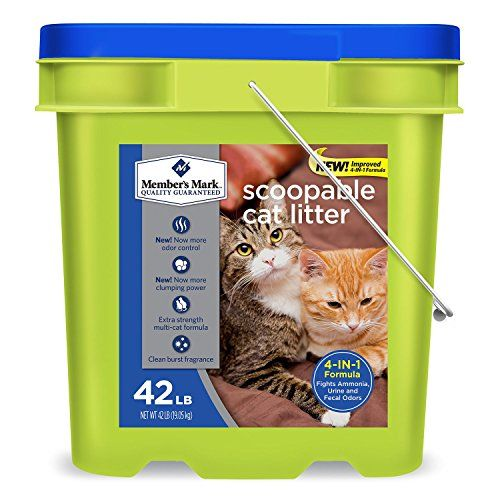 Member's Mark 4in1 Formula Scoopable Cat Litter, 42 lb