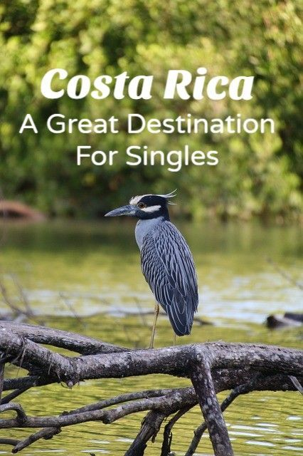 <h1>Costa Rican Mail Order Brides – A Womans Perspective</h1>