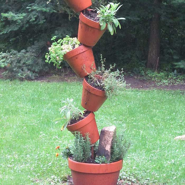 pole garden for herbs one or two per container flat leaf parsley