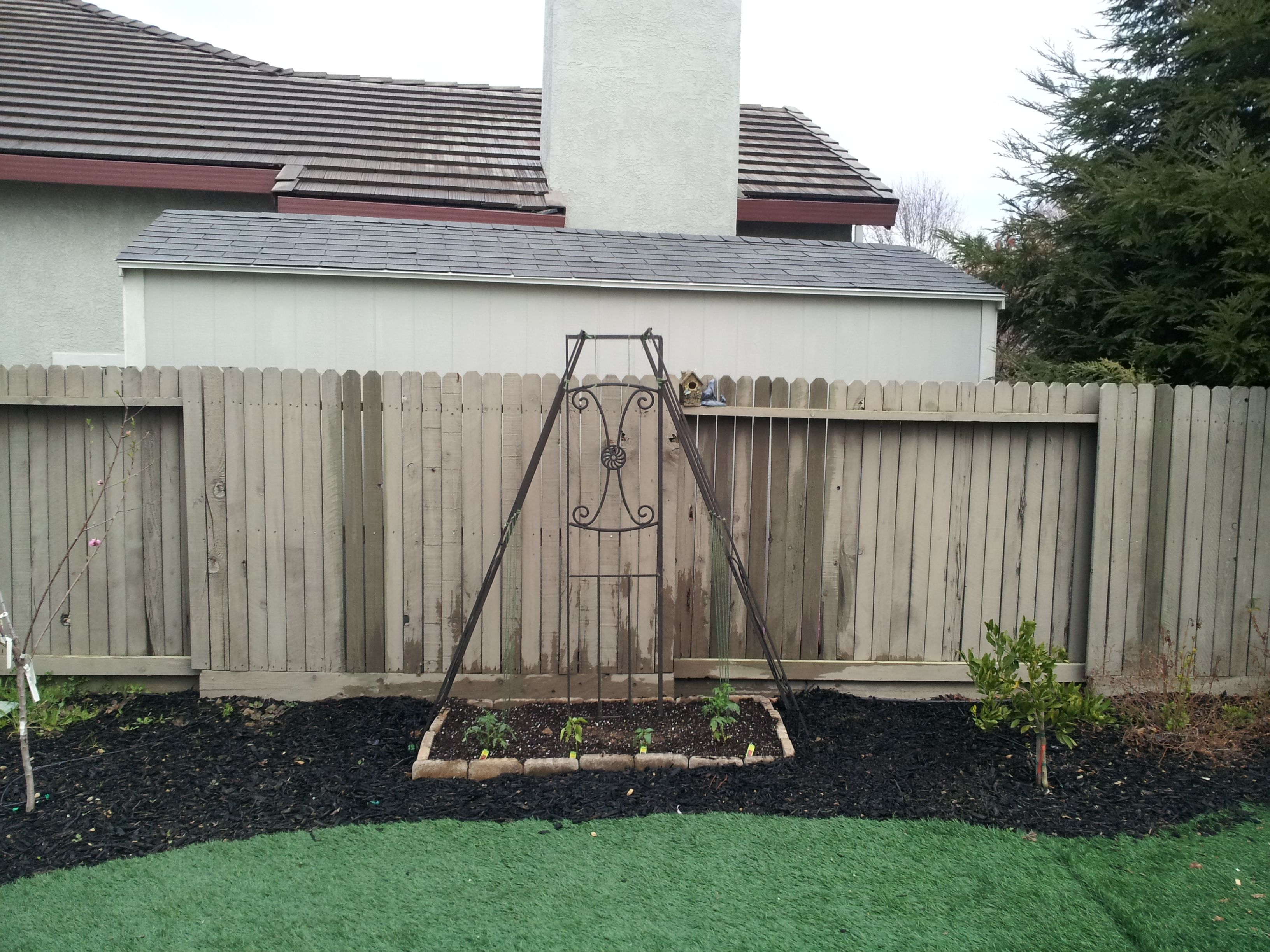 just finished planting my vining veggies the trellis is reusing