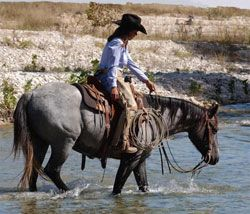 Ranches are where my roots are, ...