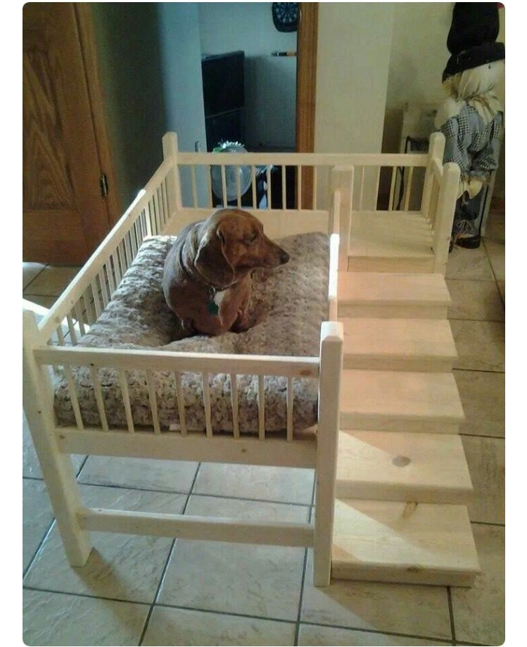 Toddler Bed Turned Into A Dog Bed Diy Diy Dog Bed