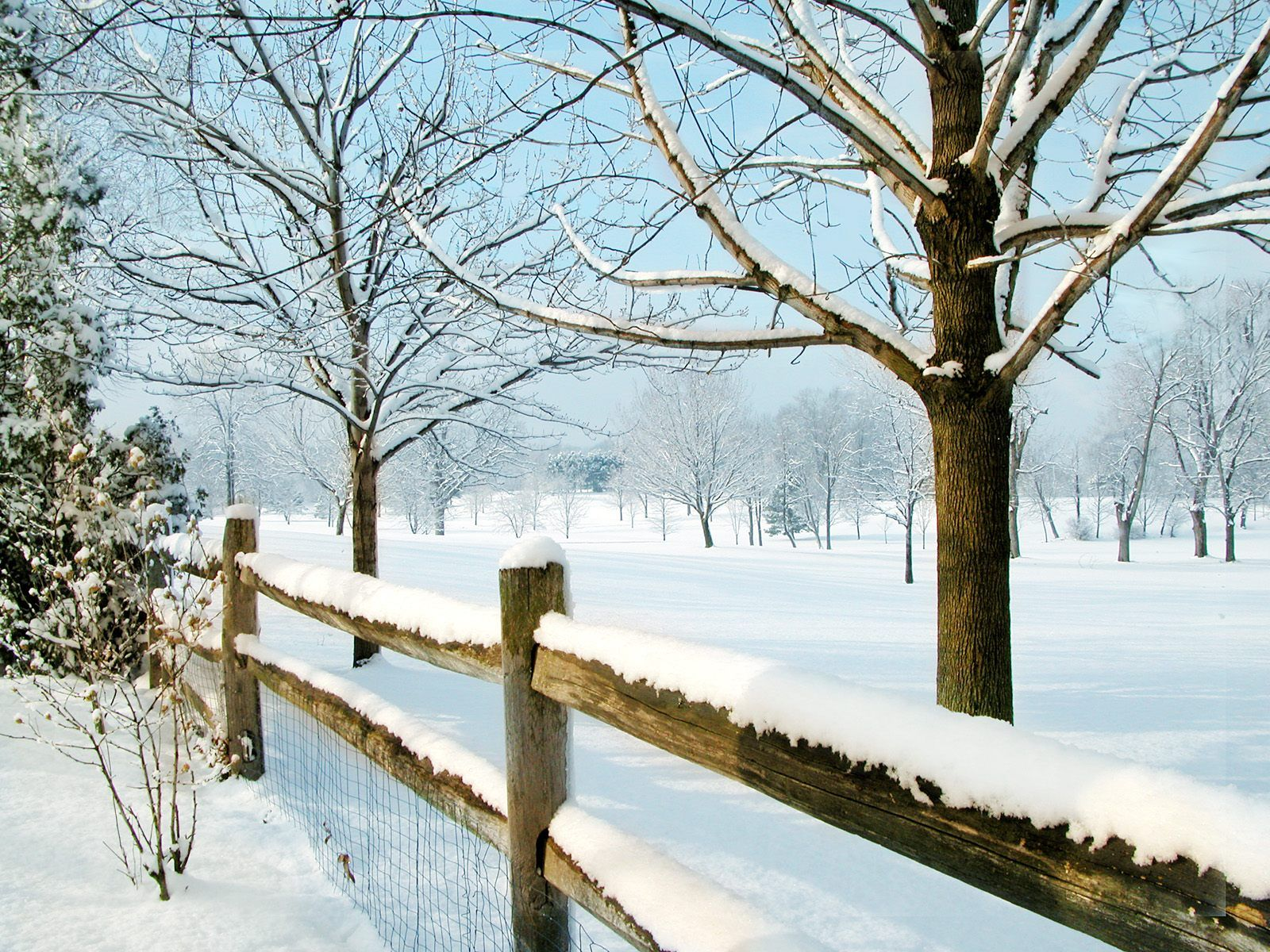 winter free desktop wallpapers for hd widescreen and mobile