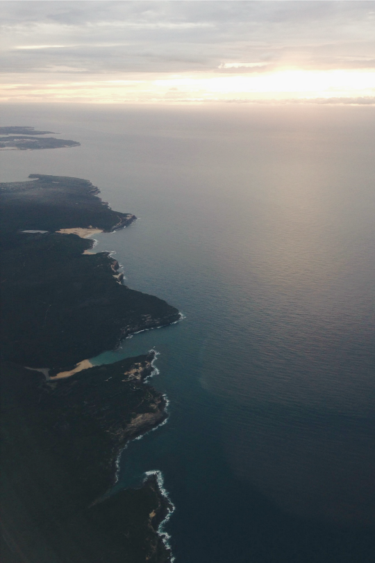 expressions-of-nature:   Sydney Bound by Anja... : expressions-of-nature