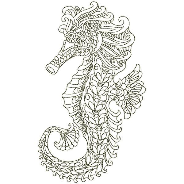Sdql 0050 Sea Horse Animal Coloring Pages Coloring Pages