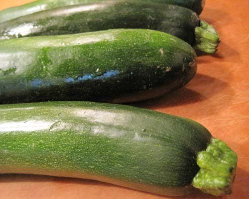 Pin by Gardening Tips on Plants, Seeds & Bulbs | Zucchini ...