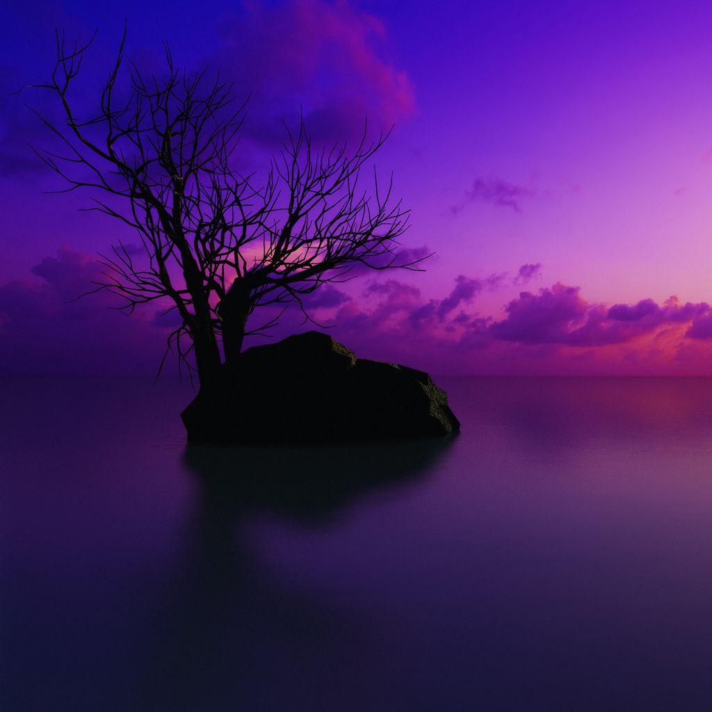 Purple Sunset iPad Wallpaper http//www.ilikewallpaper