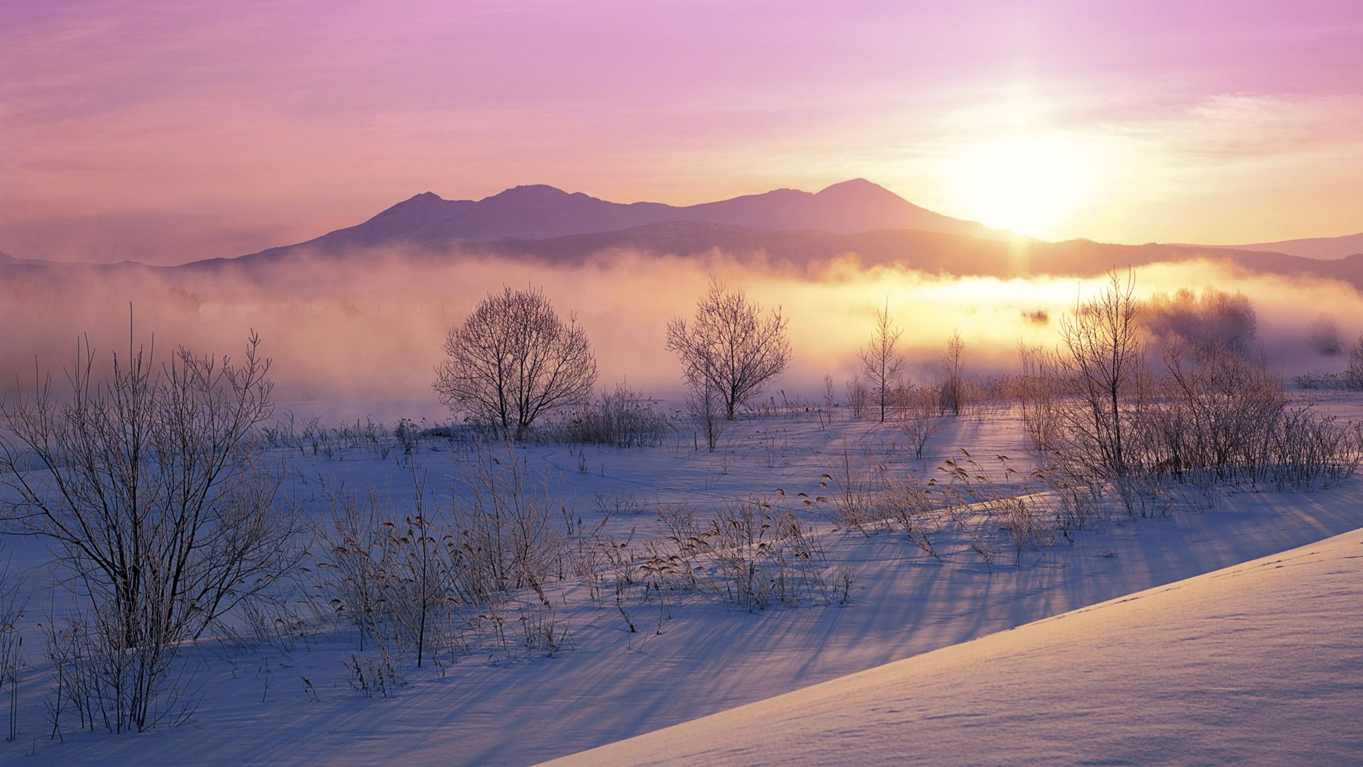 Misty Winter Morning In Maine Beaches Nature Background
