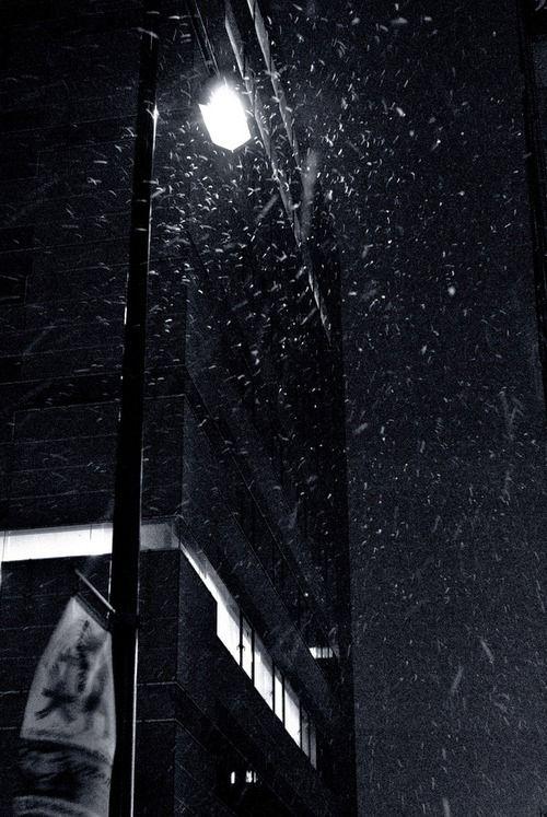 tokyo in winter