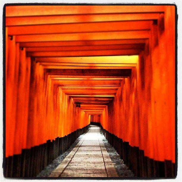 伏見稲荷大社 (Fushimi-Inari-Taisha Shrine) in 京都市, 京都府