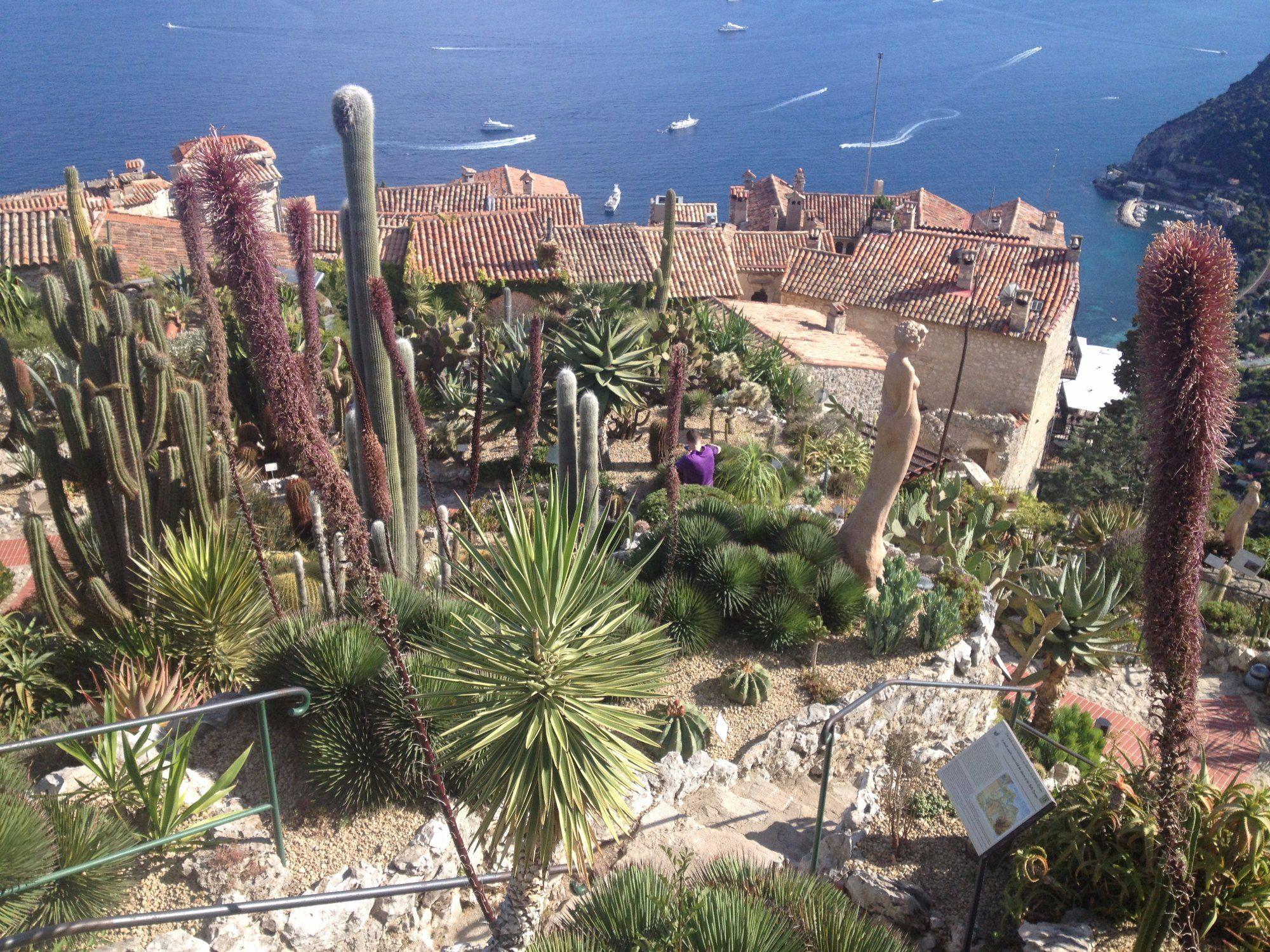 Le Jardin Exotique D Eze France Top Tips Before You Go