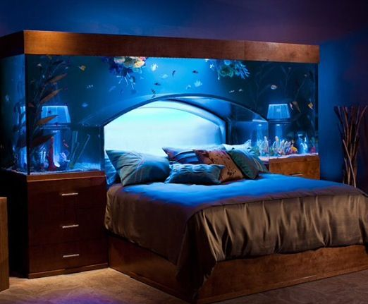 Aquarium Bed-perfect for a marine biologist Dream Home Pinterest - deko fur aquarium selber machen