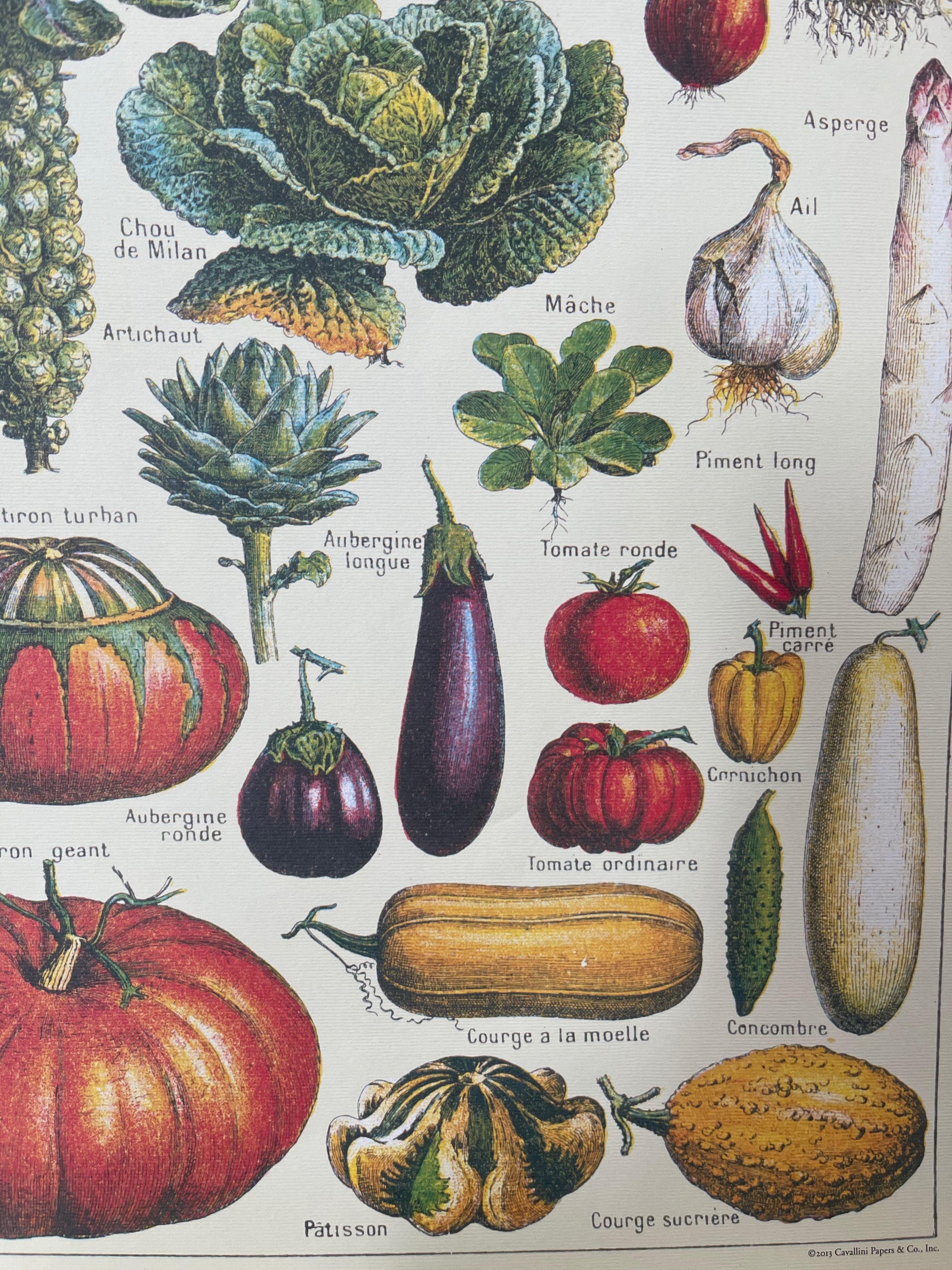Le Jardin - French Vegetable Garden Poster