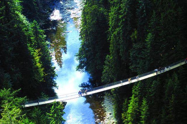 Capilano Suspension Bridge in BC, Canada