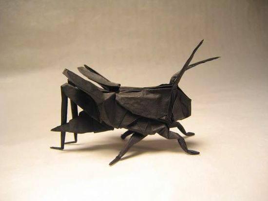 Origami Master Brian Chan Entire Album Httpfacebook