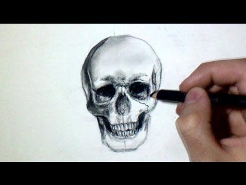 Comment dessiner une t te de mort tutoriel recettes - Comment cuisiner des trompettes de la mort ...