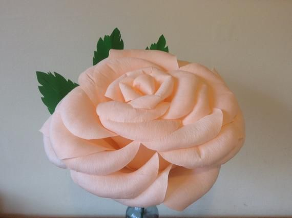 Giant paper rose in blush peach #crepepaperroses