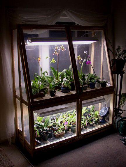 Broke College Student Diy Wardian Case Orchid Forum Orchid Care With Images Indoor Greenhouse Diy Greenhouse Indoor Garden