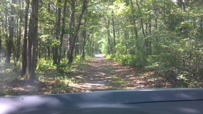 Taking a back road to avoid Cape Cod summer traffic.