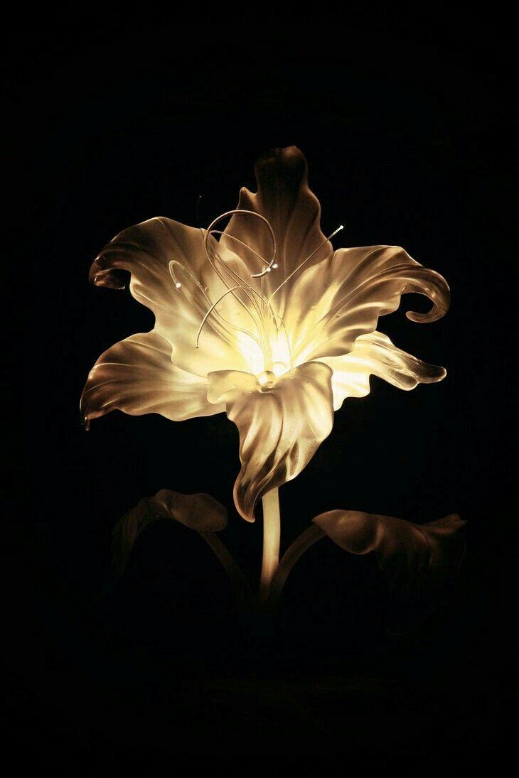 Tangled's golden flower | Disney art, Disney tangled