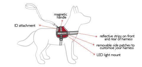 Service Dog Vest Dog Harness Vest Ezydog Convert Harness Dog