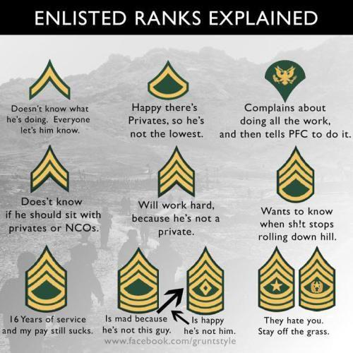 Ranks Explained Army Humor Military Ranks Military Jokes