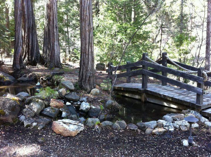 Creek and Bridge at Stewart Mineral Springs, Mount Shasta Area