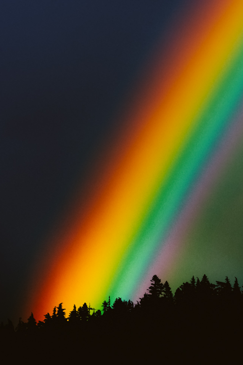 Magic Rainbow In 2019 Rainbow Nature Love Rainbow