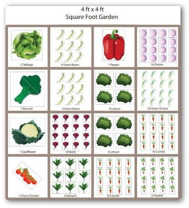 Sample Square Foot Vegetable Garden Plan | Small vegetable ...