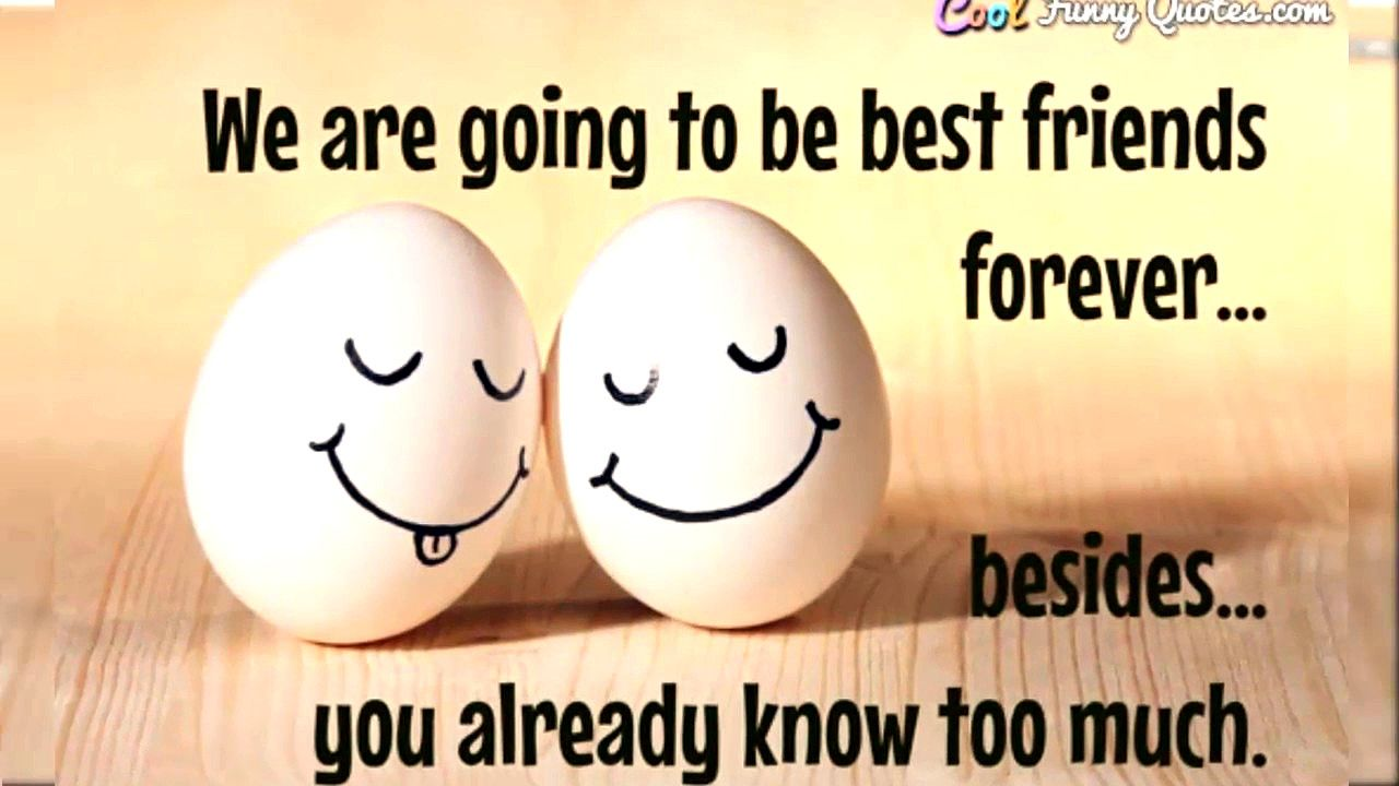 True Friendship Quotes Grateful Relattionship Friendship Quotes Funny Friendship Quotes In Hindi Friendship Humor